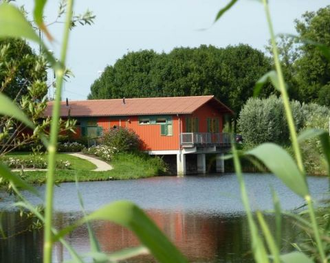 Hajé Waterlodges de Aalscholver